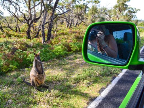 Een camper(tje) in Australië huren