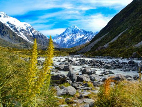 Kia Ora, hallo en welkom in Nieuw-Zeeland!