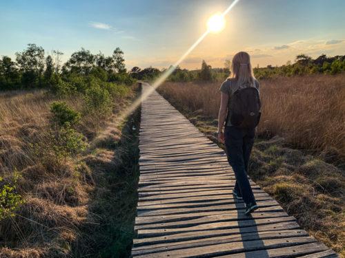 4x verrassend wandelen in Nederland