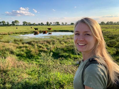 Wandelen in Zuid-Oost Brabant, 3 prachtige wandelroutes door de natuur